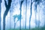 dinesh_hegde_landscape-1414